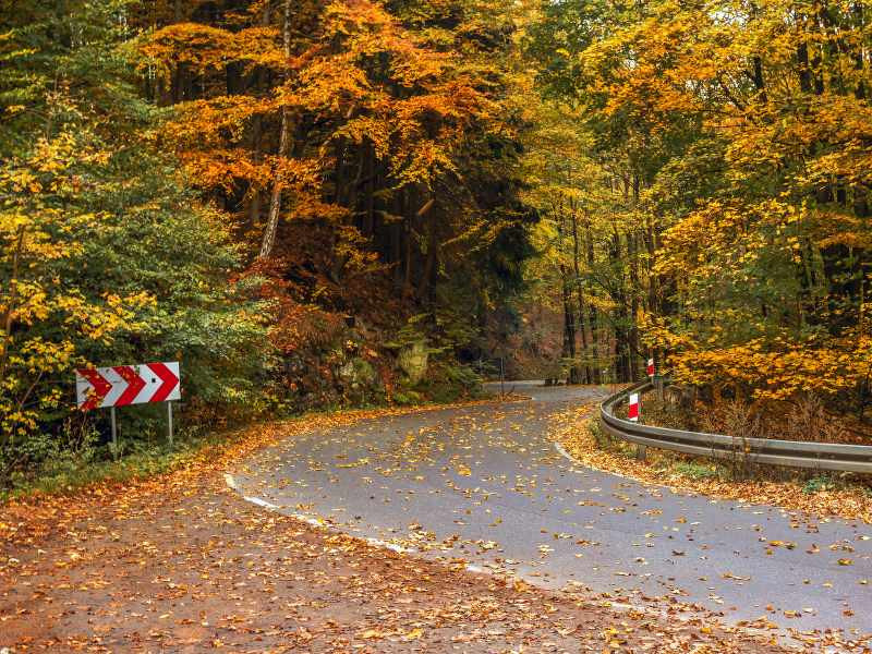 hundred curves road poland_800x600