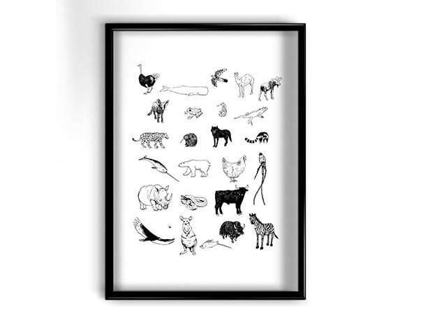 Abécédaire des animaux 1 - Squellettes p