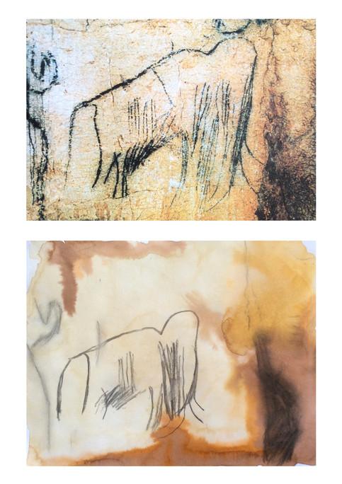 Peinture rupestre - Hippolyte