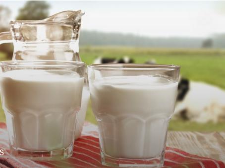 10 cosas que no sabías de la leche