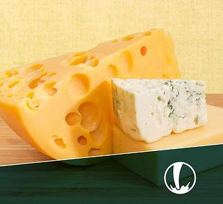 curso quesos fepale 2020.JPG
