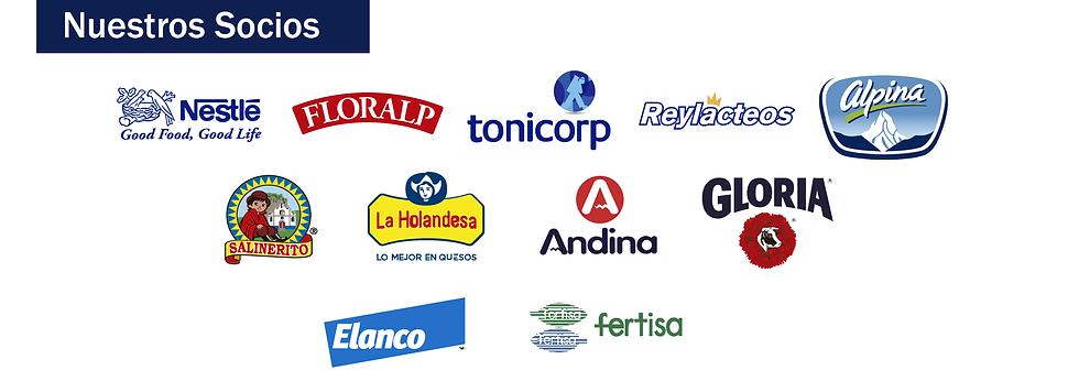 logos socios web 4_Mesa de trabajo 1.png