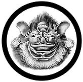 bandit logo2 2.jpg