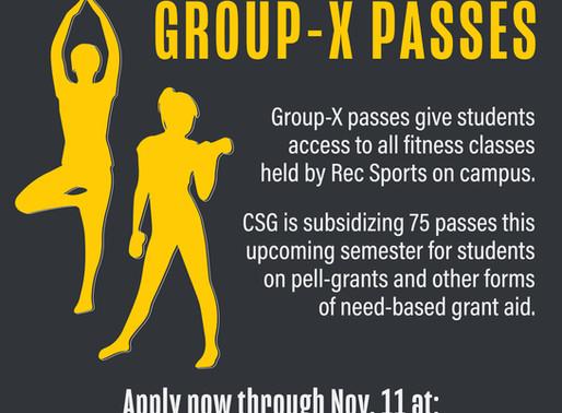 Subsidized Group-X Passes