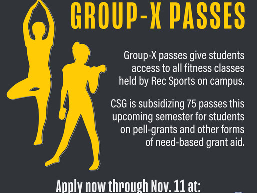 Subsidized Group-X Passes