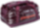Patagonia Bag - Transparent.png