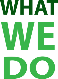 What We Do - Color.png