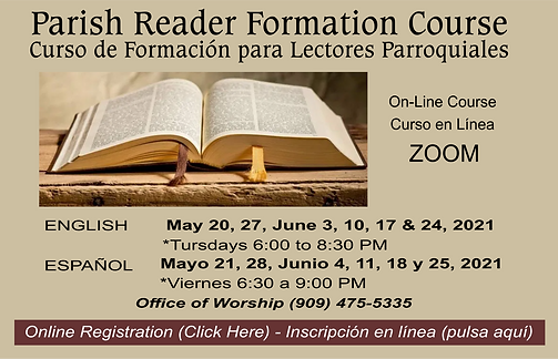 Curso Lectores.png