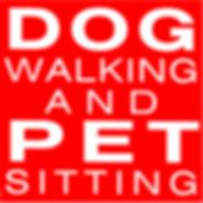 service de promenade pour chiens et gardiennage de chats