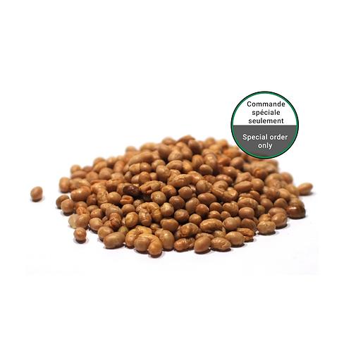 Fèves de soya rôties et non-salées bio
