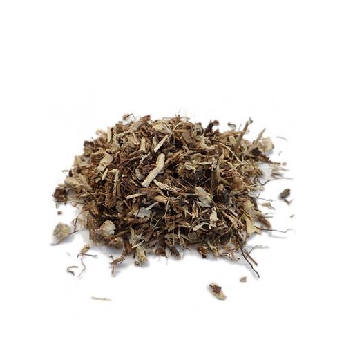 Échinacée angustifolia bio