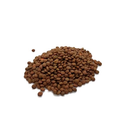 Lentilles brunes bio