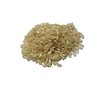 Riz blanc court bio