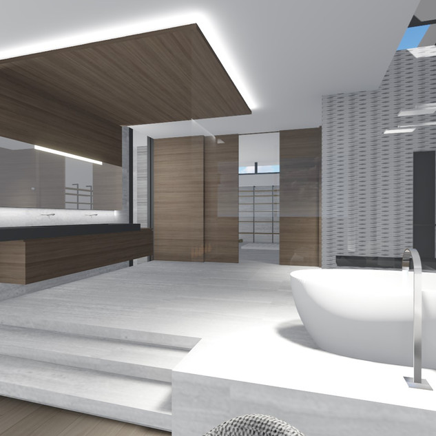 Spatial concepts are presented to clients through three-dimensional conceptual renderings.