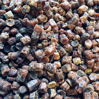 Bee Bread 01.jpeg