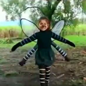 ¿Qué tendrá el mosquito?