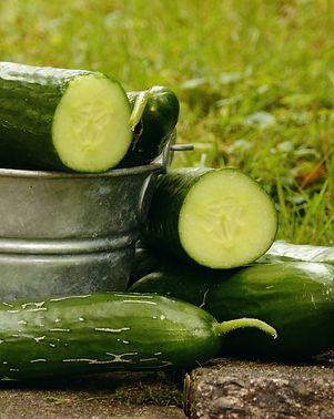 cucumbers-1588945_1920.jpg