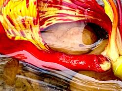 The Fire Within - Sachin Desai