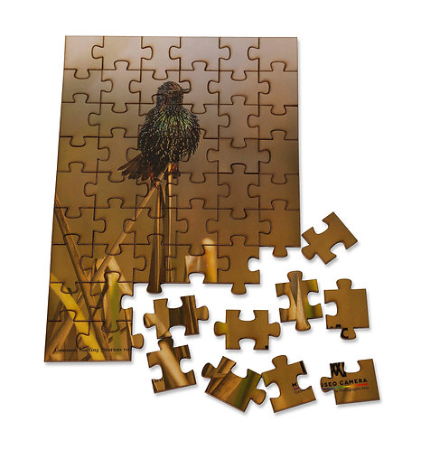 Jigsaw Puzzle (54 pieces)
