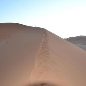 Reizen in de Sinaï woestijn