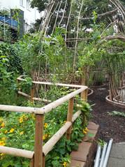 Ontwerp en creatie van binnentuinen