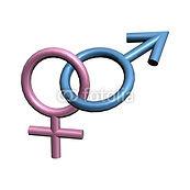 Masculin_Féminin.jpg