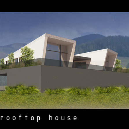 black_rooftop_house (1).png