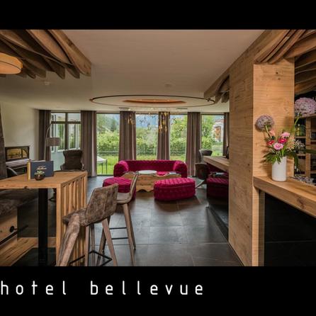 black_hotel_bellevue (1).png