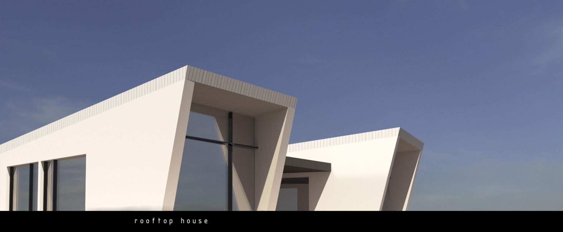 rofftop_house2.jpg