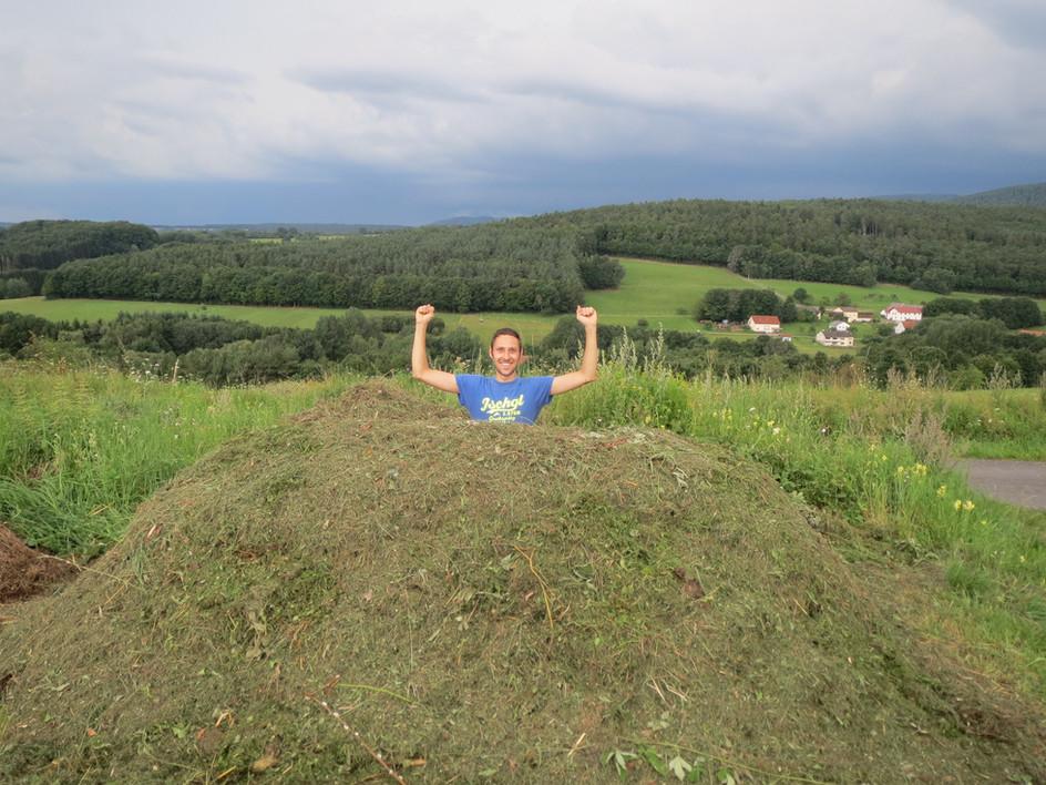 Kompost/aerob- des Gärtners Glück