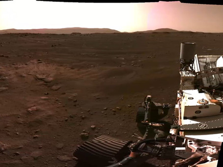 Mars Planet - What plants can be deployed on Mars? What are the difficulties? Is that even possible?
