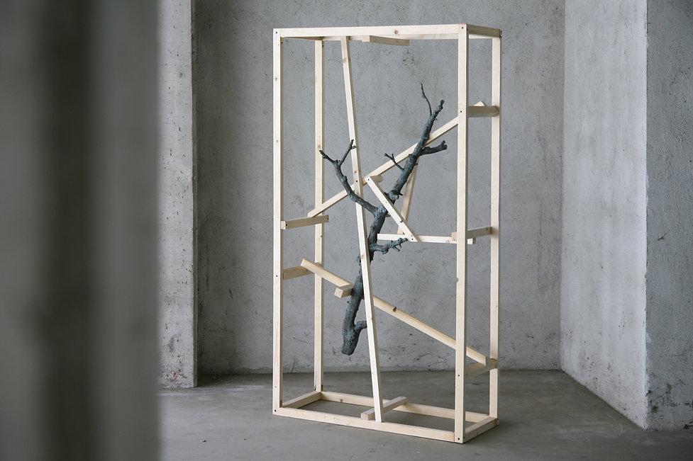 Daniele Accossato, Sculpture, contemporary art, branch