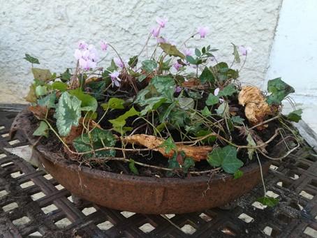 Transformer un barbecue en jardinière