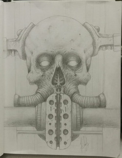 Metal & Bone Study