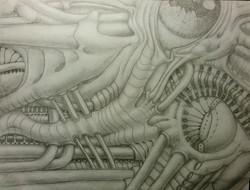 Bio Study 03