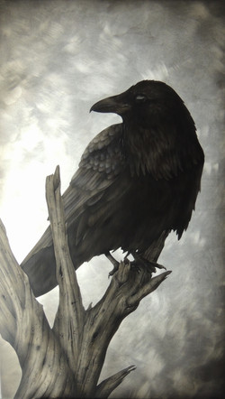 The Raven #2