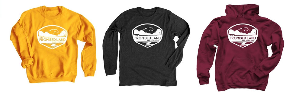 thepromisedlandmerch