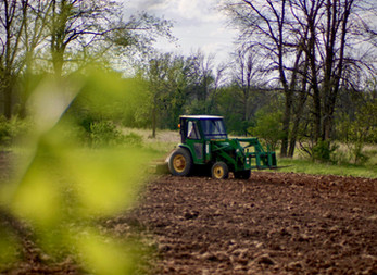 First spring preparing our lands for a harvest