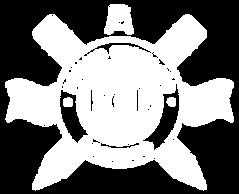 PCB-blanco.png