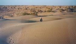 India diary - Day 10 - desert near Jaisalmer