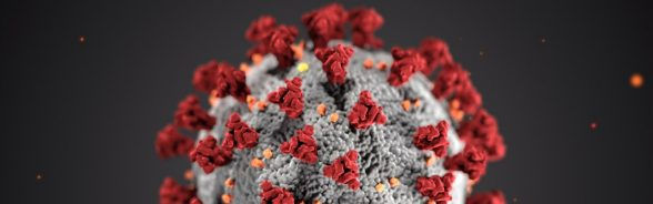 image.coronavirus_165.jpg