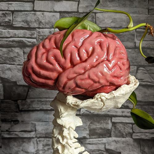 Brain Planter - 1/2 size - PINK