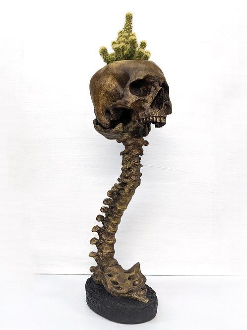 Lifesize Skull and Spine Set - Entombed