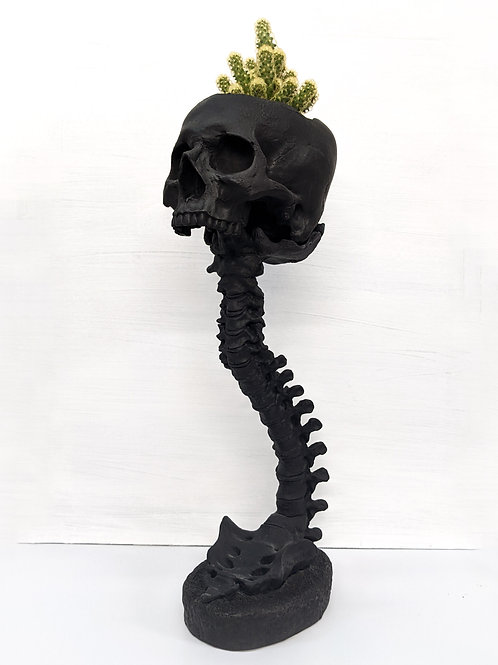 Lifesize Skull and Spine Set -Black Matte