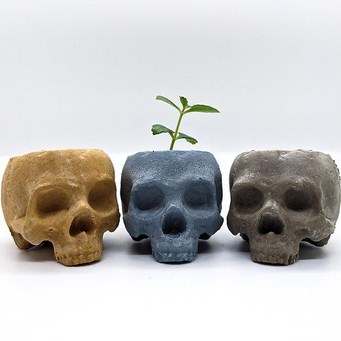 Skull Planter - Mini