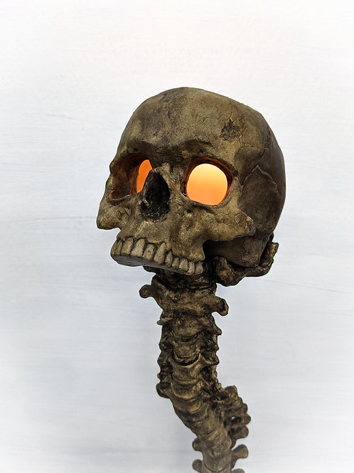 Candle Holder and Spine Set - Entombed