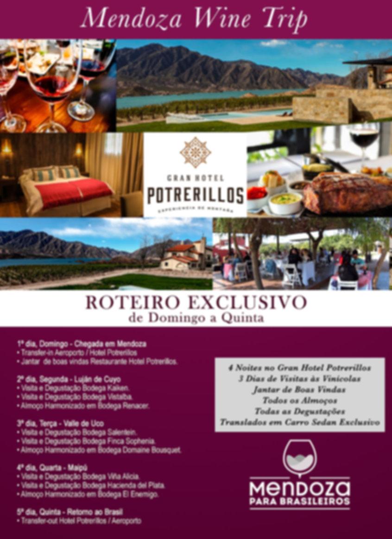 Mendoza-Wine-Trip.jpg