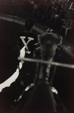 circus34