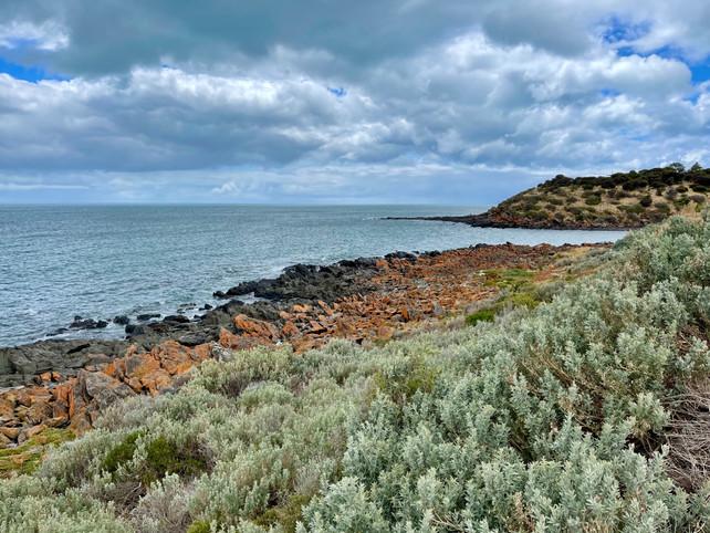 Cove coast