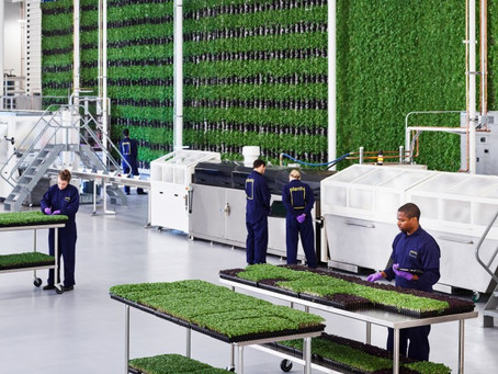 Vertical Agriculture Coming to Compton Schools